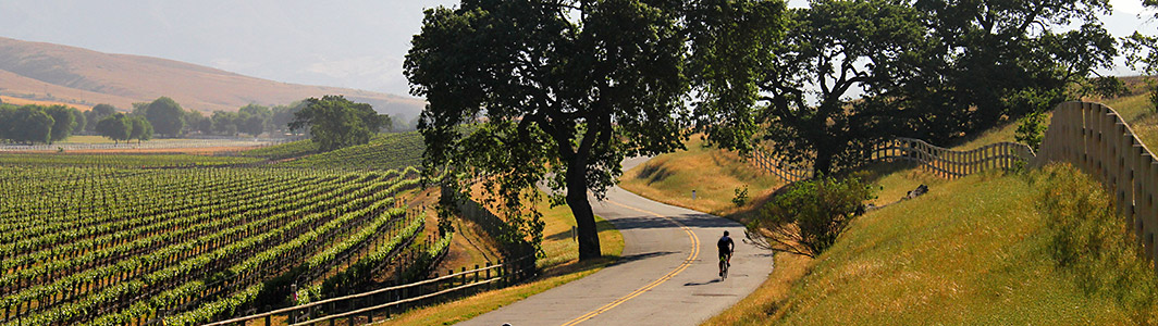 Backroads bike tours